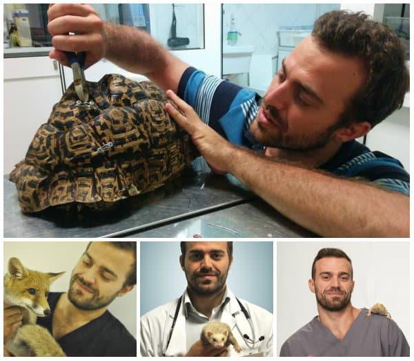 diventare assistente veterinario accademia del lavoro 4
