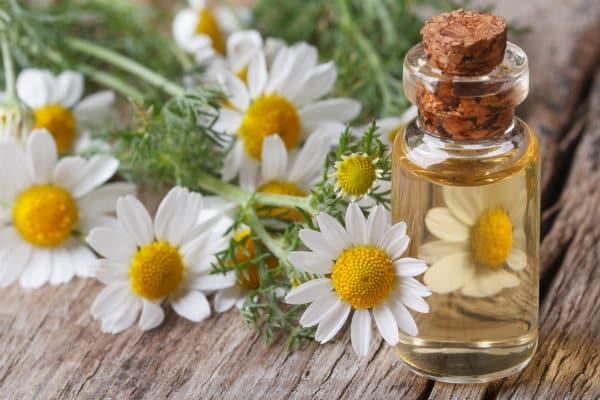 oli aromatici contro le allergie accademia del lavoro 2