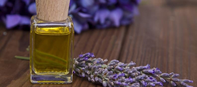 L'olio alla lavanda: un profumo che fa bene alla salute
