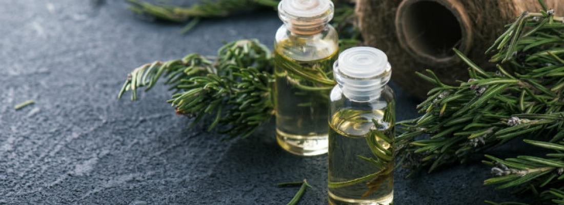 I benefici dell'olio essenziale di rosmarino