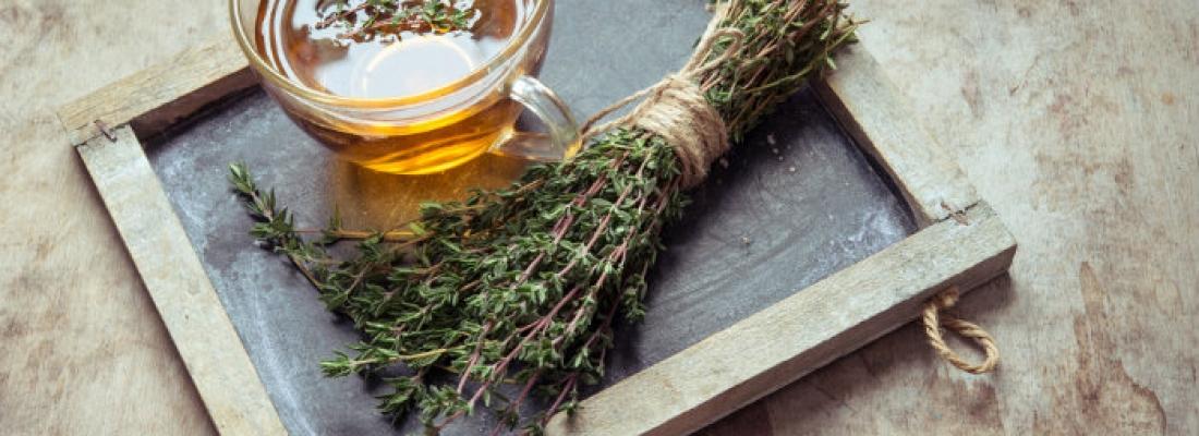 Diventare erborista: ecco le piante contro il mal di testa